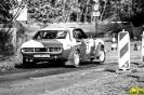 Rally Ahrweiler_11